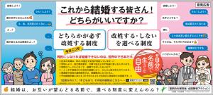 愛媛新聞に載せた意見広告(拡大)